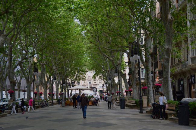 Pedestrian Passeig Born in Palma Majorca