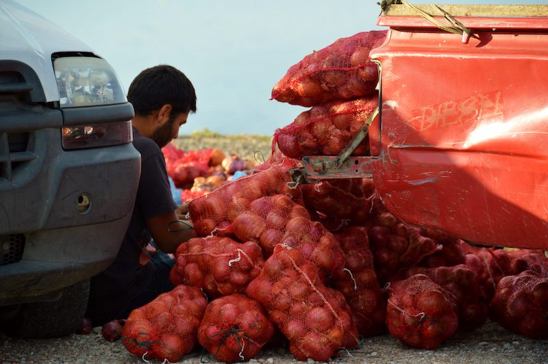 Man selling onions from a pickup truck on Lesbos Greece