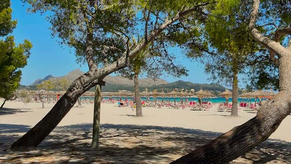 Beach and sun loungers in Alcudia Mallorca