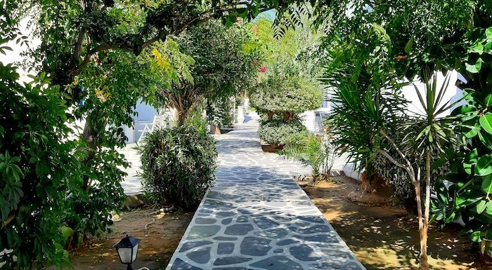 Lush grounds of Acrogiali Hotel Mykonos